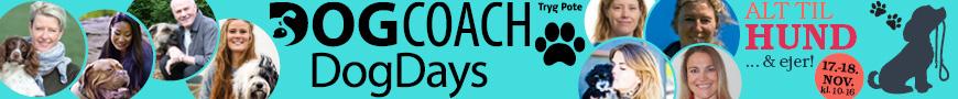 Sales workflow banner 1527247783
